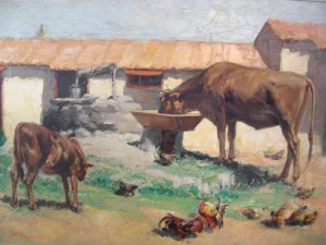 Rural yard with cows